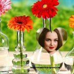 Fotomontaje con margaritas de colores