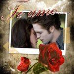 """Fotomontaje de """"Te Amo"""" con rosas rojas"""