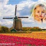 Fotomontaje de paisaje de molino y rosas