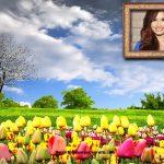 Fotomontaje de campo con flores